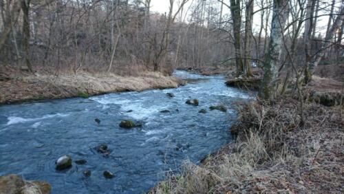 軽井沢星野エリア_護岸工事のされていない自然の河川