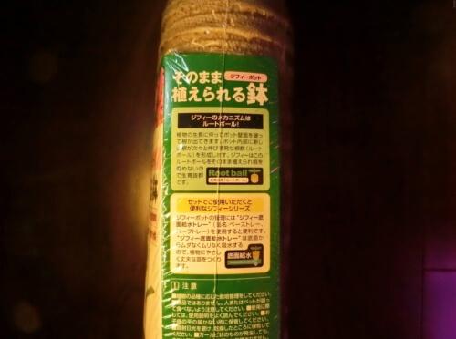 【杏(あんず)栽培記録】190708